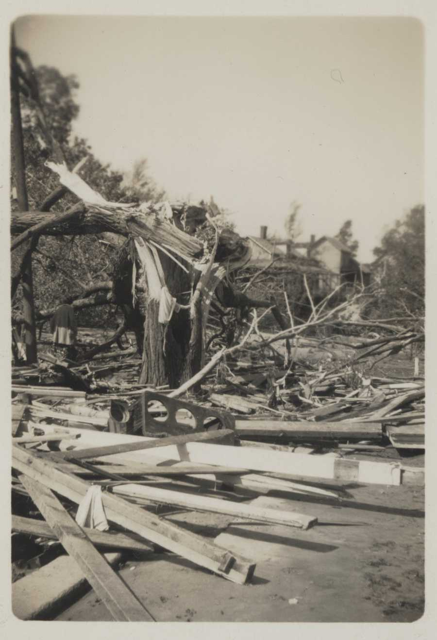 A very large tree shattered by wind and storm surge in Conimicut, Rhode Island. Remains of some building in the foreground. New England Hurricane of 1938.