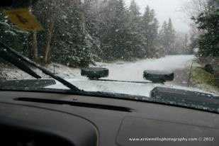 These photos were just taken on Mt. Washington Auto Road.