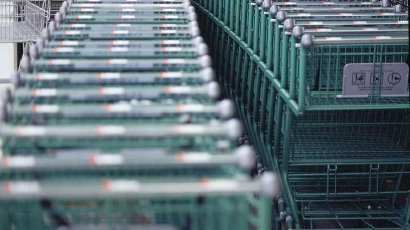 Grocery Store Carts.jpg