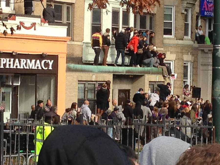 Fans are literally climbing the walls to catch a glimpse.