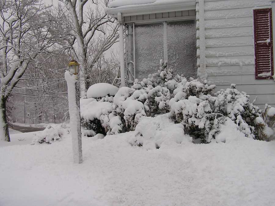 Taunton got 1.1 inches of snow according to the National Weather Service.(All photos are of the location referenced, but for illustrative purposes and not necessarily from the Nov. 7 storm)