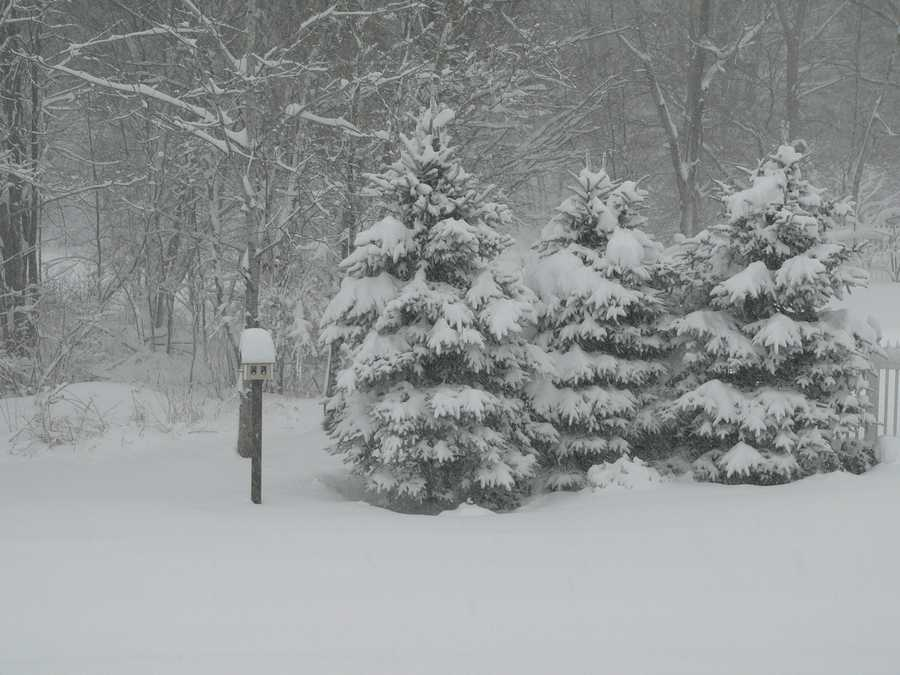 Grafton got 3.0 inches of snow according to the National Weather Service.(All photos are of the location referenced, but for illustrative purposes and not necessarily from the Nov. 7 storm)