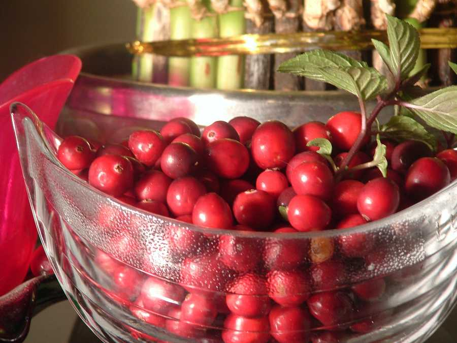 She recommends buying bags of fresh cranberries now, while they are in season and at their nutritional peak, and popping them in the freezer for later use.