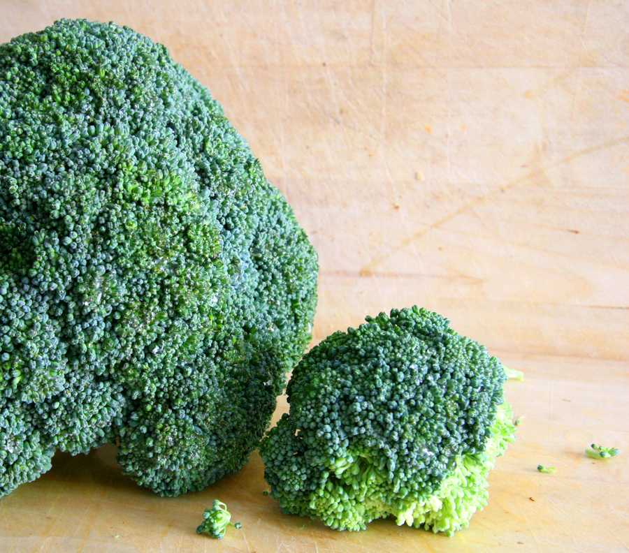 Other members of the cruciferous family include broccoli...