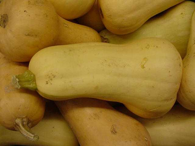 Pumpkins, squash, carrots, and sweet potatoes are all packed with a cancer fighting nutrient called carotenoid.