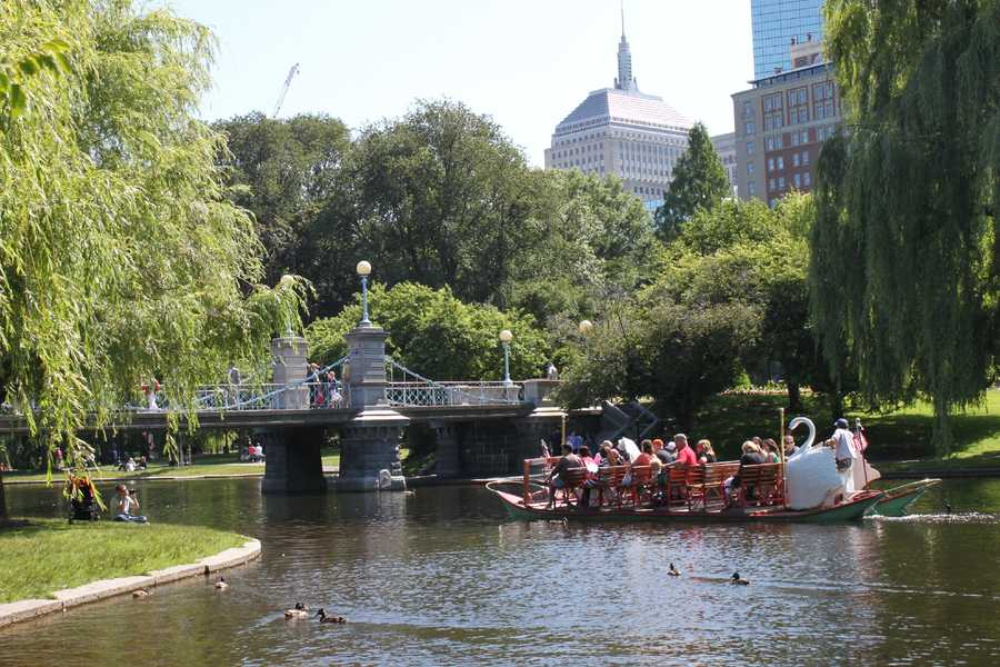 JC says her favorite Boston landmark is the Swan Boats