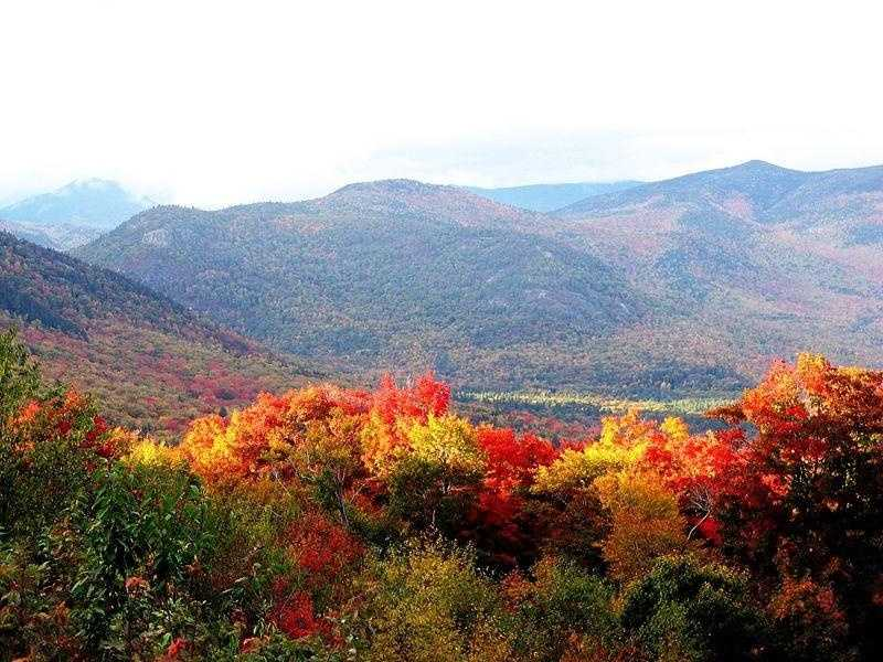 """Randy's favorite time of year is Fall. """"It's just the best in New England."""""""