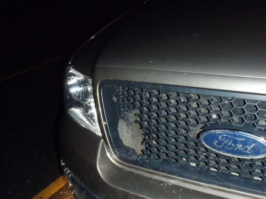 He pulled the truck over and found the owl lodged in his grill, flapping its wings and splaying its talons.