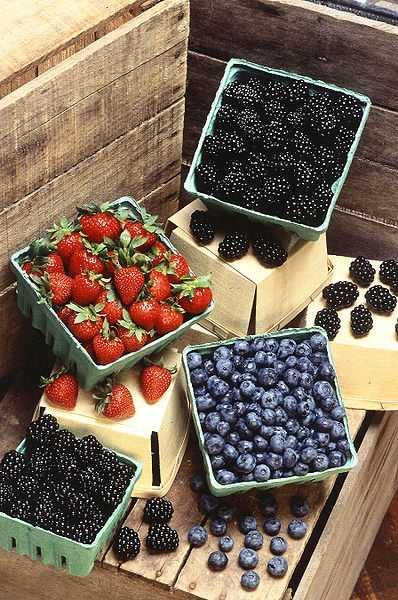 12.) Berries