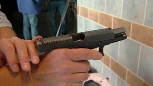 hand gun generic