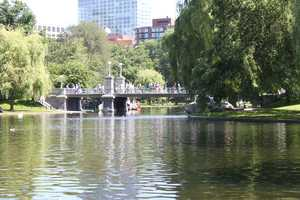 "Liz's favorite Boston landmark is the Public Garden bridge.  ""I love the bridge that crosses over the Swan Boat pond in the Public Garden ... it's just so beautiful!"""