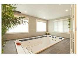 Your personal swim spa.