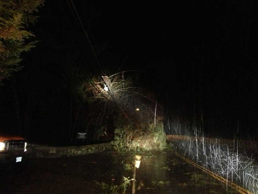 A tree fell on power lines on Route 16 in Wellesley.