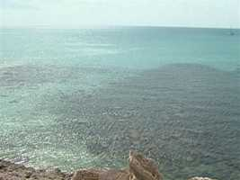 "Columbus called it ""Baja Mar"", Spanish for shallow sea."