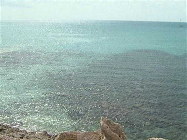 "Columbus called it ""Baja Mar"", Spanish for shallow sea."