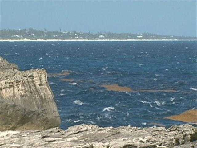 Eleuthera Island is two miles wide and 110 miles long.