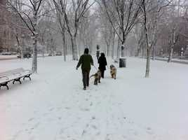 A stroll in the snow.