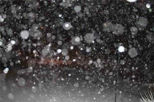 Snow falling in Newton.