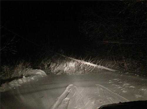 A tree blocking the road in Cohasset