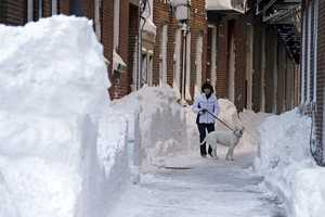 Joan Whiteley and her dog Izzie walk take a walk on Hanover Street in the North End neighborhood of Boston, Sunday, Feb. 10, 2013.