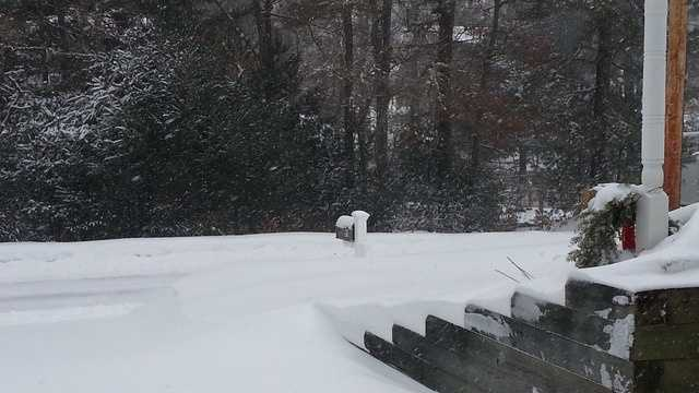 U Local Wareham Snow