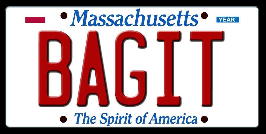 Rejected: BAGITRegistry's reason: the Registry may have considered the combination  vulgar in that it is in poor taste.