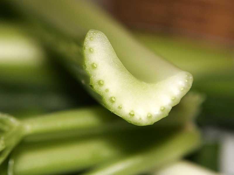 1/2 cup celery sticks