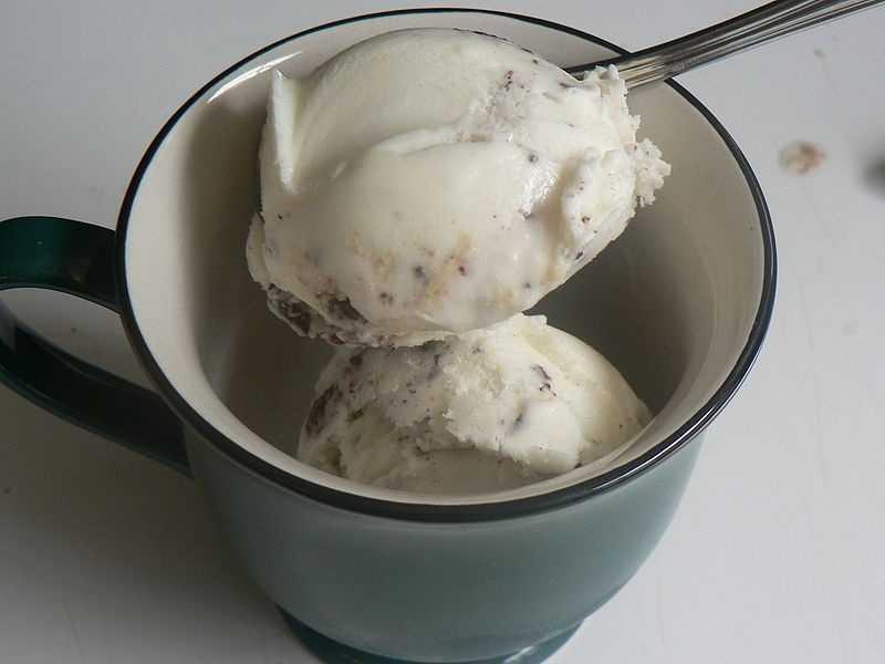 SNACKS 1 cup frozen yogurt (chocolate)