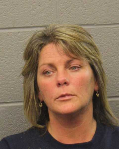 Carlene Divoll was charged by Webster police withOUI LiquorNegligent Operation of a Motor VehicleSpeedingResisting ArrestDisorderly Conduct