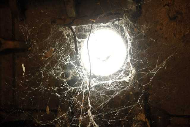 Spider webs surround a porthole inside the once-glamorous SS United States in Philadelphia, Tuesday, Feb. 1, 2011.