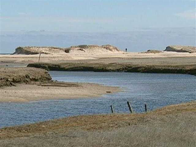 This winter's storms have cut eight new breaks through the barrier dunes in Sandwich.