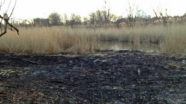Muddy River Brush Fire