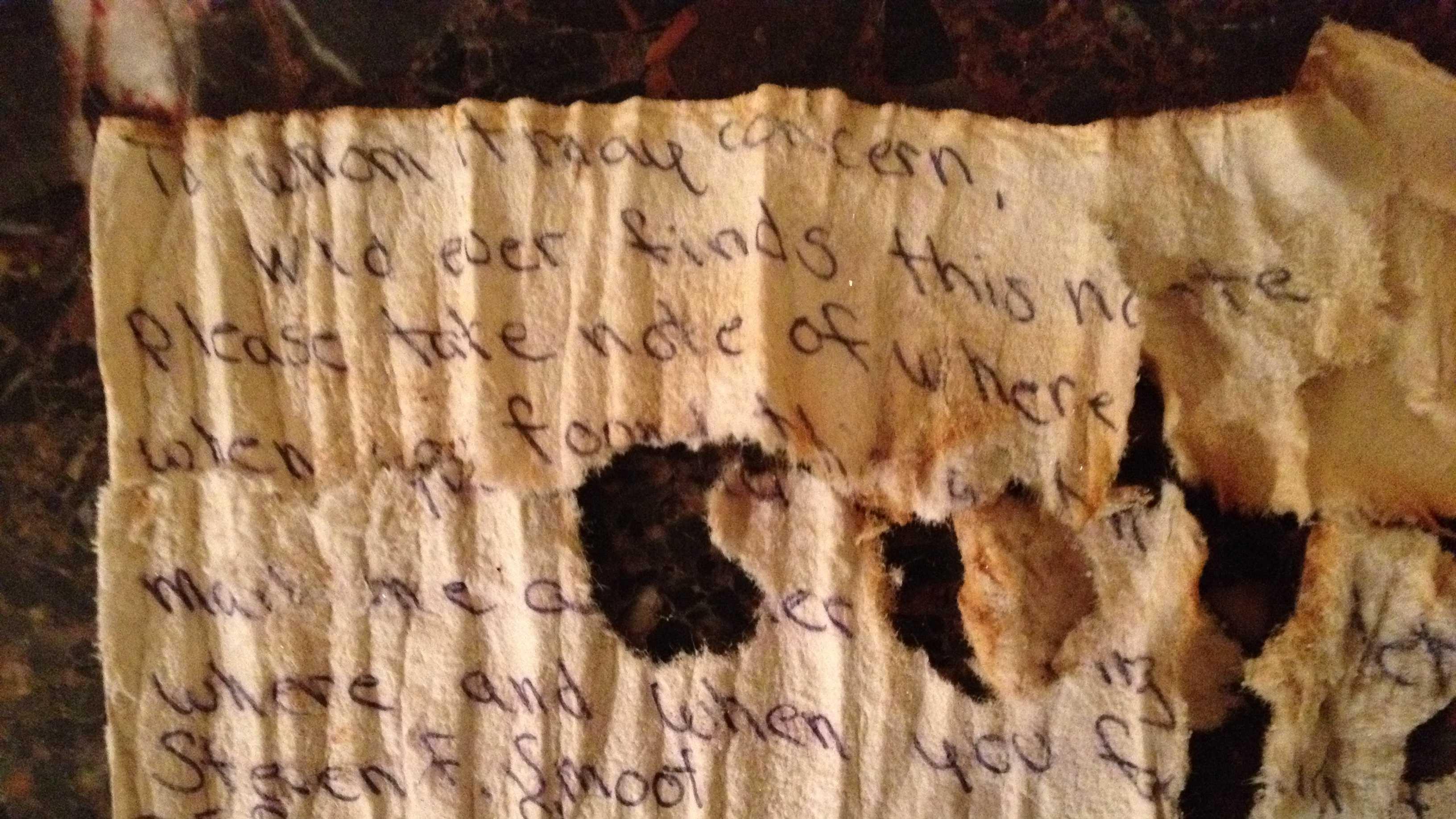 Letter in a bottle
