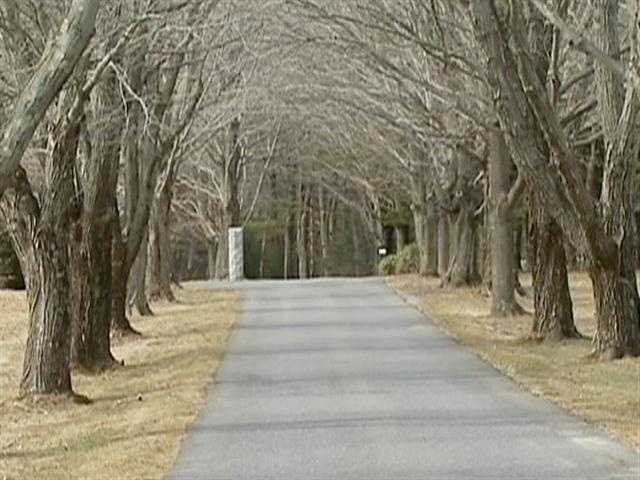 There are mansions with tree lined driveways, that go on, forever.
