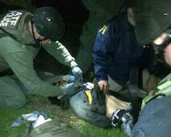 In this Friday, April 19, 2013 photo obtained by The Associated Press and authenticated by a member of the Bureau of Alcohol, Tobacco, Firearms and Explosives, ATF and FBI agents check suspect Dzhokhar Tsarnaev for explosives and also give him medical attention after he was apprehended in Watertown.