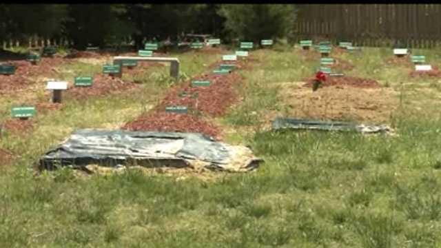 Tamerlan Tsarnaev buried in Va