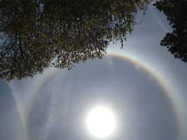 Is it a rainbow?  What's wrong with the Sun?   Common questions into NewsCenter 5 Sunday afternoon.