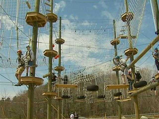 The adventure could include zip lining through the trees or balancing on a wire.