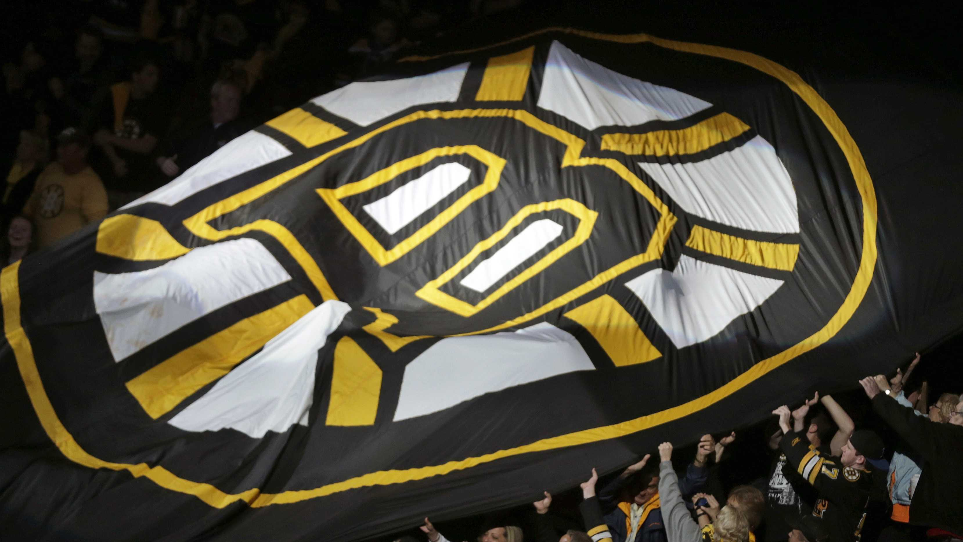 Bruins Flag in Stands 061213 AP