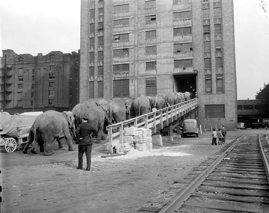It was home to the circus when it came to town each year.