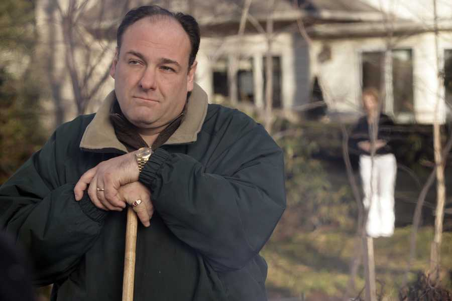 "James Gandolfini, whose portrayal of a brutal, emotionally delicate mob boss in HBO's ""The Sopranos,"" was the brilliant core of one of TV's greatest drama series and turned the mobster stereotype on its head. Gandolfini, who won three Emmy Awards for his role as Tony Soprano, worked steadily in film and on stage after the series ended. He earned a 2009 Tony Award nomination for his role in the celebrated production of ""God of Carnage."" (September 18, 1961 – June 19, 2013)"