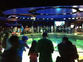 Aquarium visitors can see what a pristine coral reef looks like up close and how it functions.