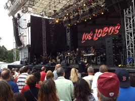 One of many performers on the Boston Common... Los Lobos!