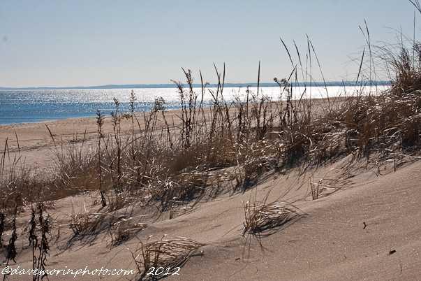 Plum Island is an 11-mile long barrier Island off the shore of Newburyport and Newbury in Northeastern Massachusetts.