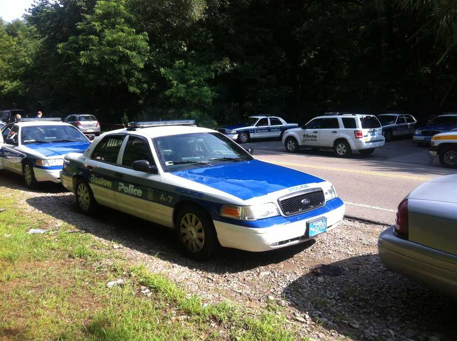 Her body was found in the Stony Brook Reservation in Hyde Park.