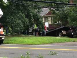 Her truck went through a pole and a large tree