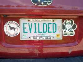 EVILDED - Someone is a big horror movie fan!