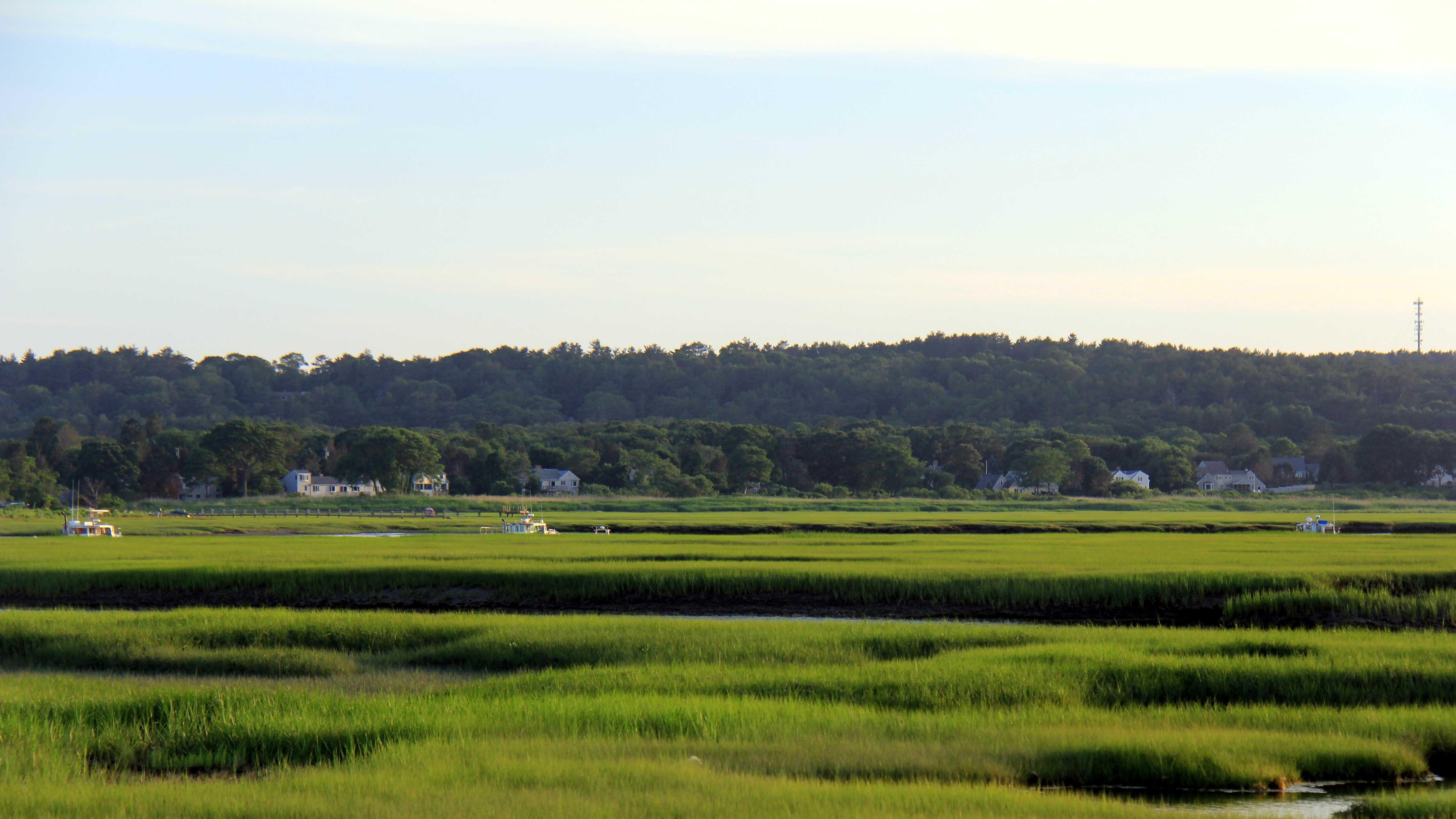 Generic Tidal Marsh area - Humarock 073013.JPG