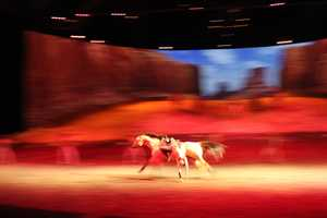 Some of the riders perform tricks on their horses, pretending to fall off