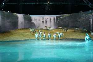 A virtual waterfall hangs in the background over the lake